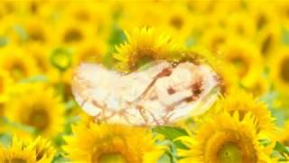 【究極睡眠体験】黄金の天使があなたに深い眠りと金運幸運の奇蹟を届けます【Golden Sleeping Gold Dream】