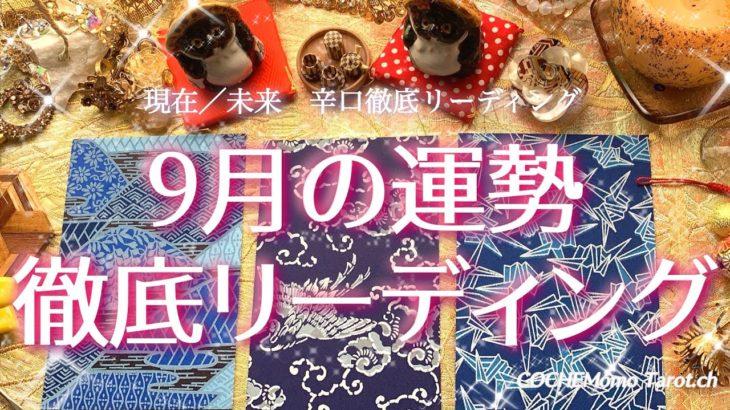 辛口!9月の運勢/徹底リーディング【和風タロット】占い、恋愛、総合、仕事、開運