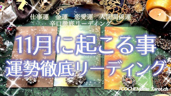 辛口!11月の運勢🌝仕事運/恋愛運/金運/人間関係/総合【タロット】占い、徹底リーディング