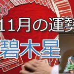 11月の運勢【三碧木星】2020年九星気学