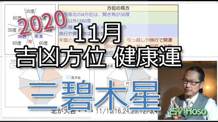 11月【三碧木星】吉凶方位・健康運etc九星気学