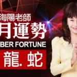 林海陽 2020 庚子年 11月運勢 生肖 兔、龍、蛇 20201026