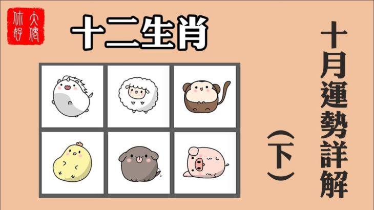 【生肖運勢】2020年十二生肖10月運勢(下),生肖豬健康不佳,生肖雞桃花旺