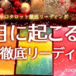 辛口!12月に起こること運勢🎄仕事/金運/恋愛/人間関係【タロット】占い、徹底リーディング