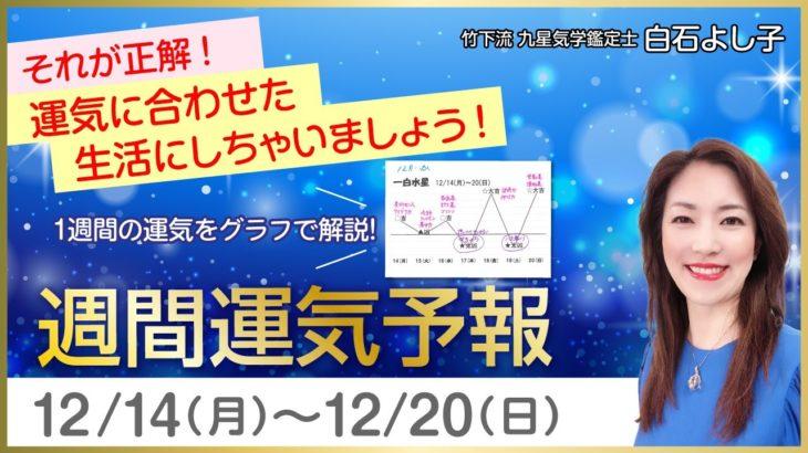 【いよいよ12月節のスタートです!】白石よし子の週間運気予報12月7日(月)~12月13日(日) 年、月、日、それぞれの運気を意識して過ごしましょう。【九星気学】【占い】