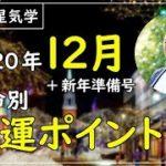 【開運九星気学】2020年12月の運勢 本命別開運ポイント+年末年始過ごし方 2020年の総括「礼」が重要